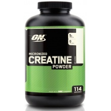 Креатин ON Micronized Creatine Powder 600 gr